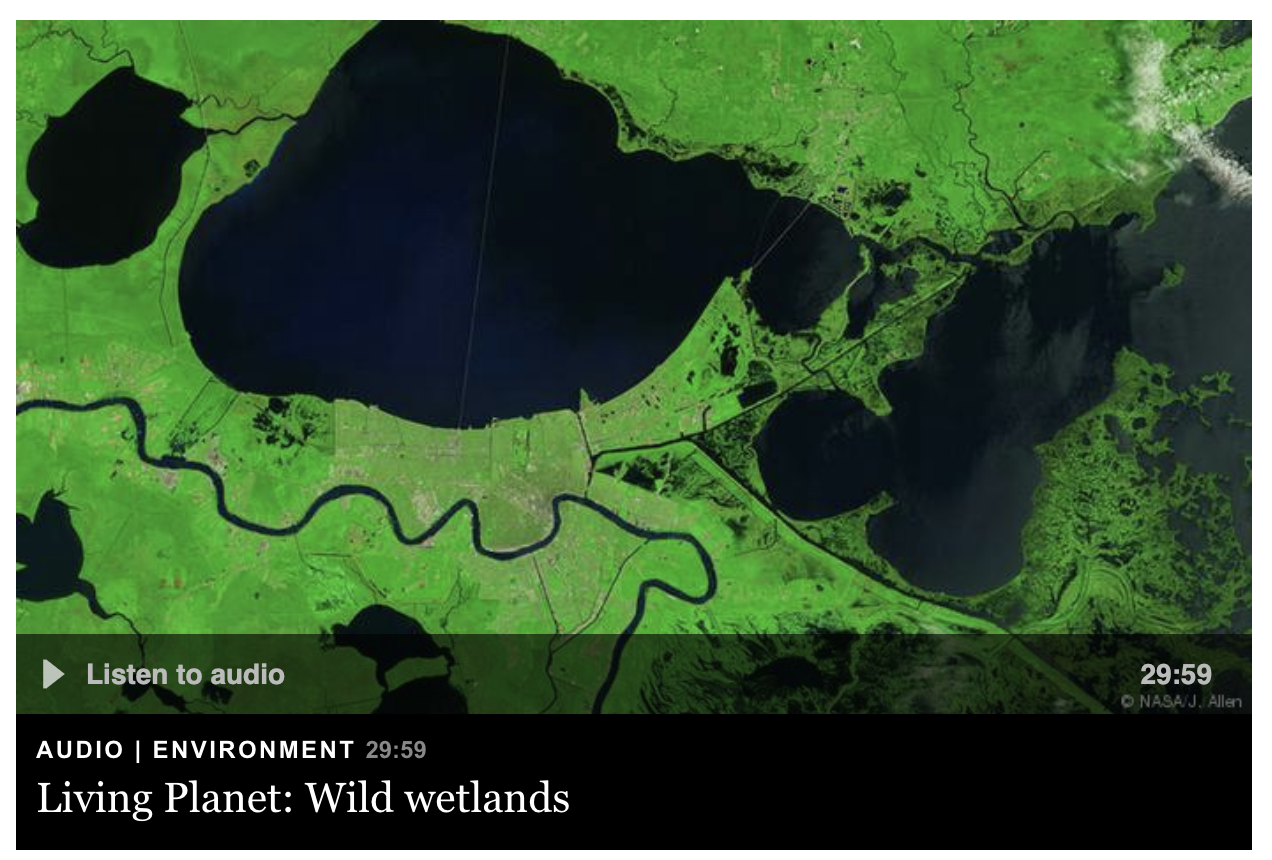 "Podcast ""Living Planet: Wild wetlands"" by Jordan Wildon"